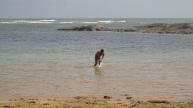 Ilha de Santo Alheixo