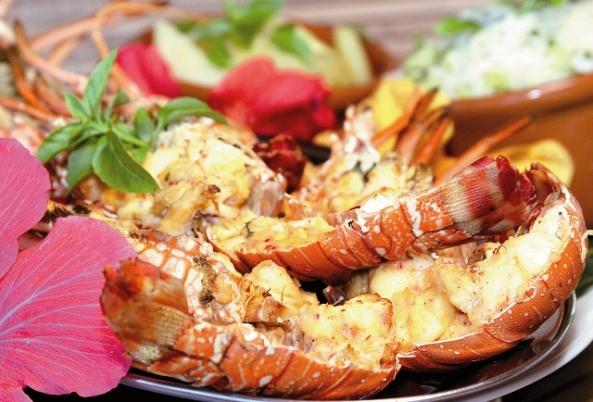 festival da lagosta